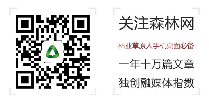 金沙娱乐澳门官网